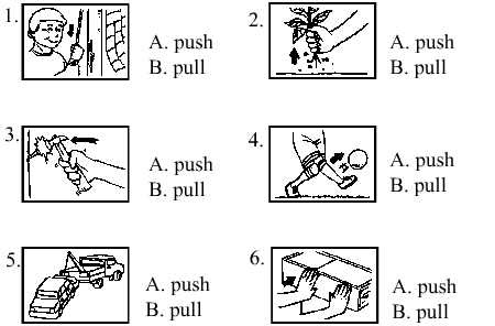 Science for Primary School ( Year 2): Unit 8 : Exercises