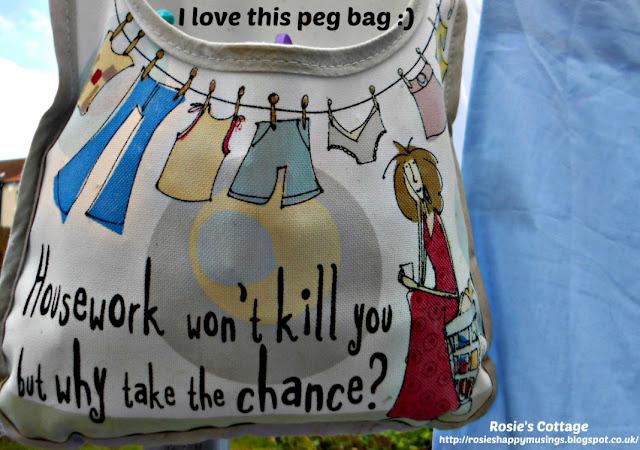 Laundry peg bag smile