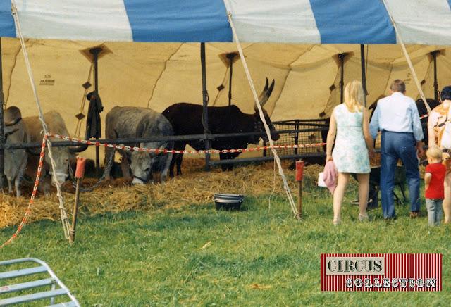 tente des animaux exotiques duCirque National Suisse Knie  1970