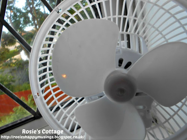 A newly spotlessly clean fan will help me to breathe without distributing dust all around the room.
