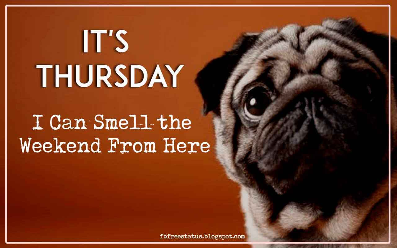 It's Thursday, I Can Smell the Weekend From Here.