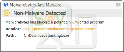 PUP.Optional.WindowsManagementService