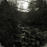 https://xeriongaliza.bandcamp.com/album/na-fraga-estremecida