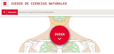 https://cienciasnaturales.didactalia.net/recurso/esqueleto-humano-de-frente-primaria/b178291b-747b-41e2-a0ea-16ae0f47d21c
