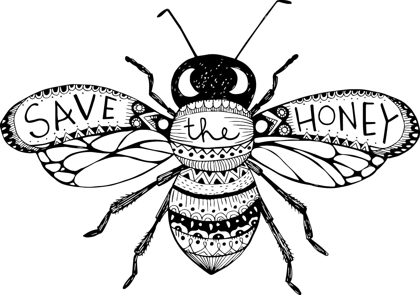 Honey Bee Drawings Gallery