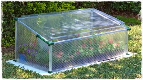"<img src=""mini greenhouse1.jpg"" alt=""mini green house"">"