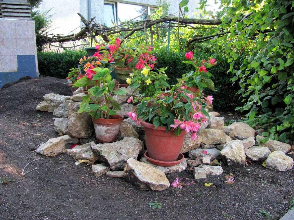 Garten dekoration - Gartenarbeit im marz ...