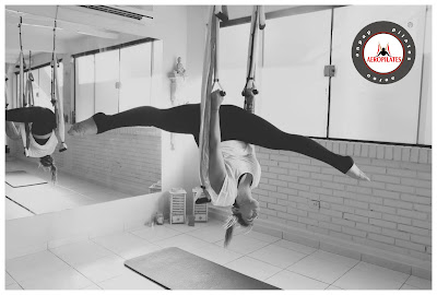 aero-pilates-santiago-de-chile-galicia-madrid-mexico-aereo-aerial-aeropilates-aeroyoga-swing-formacion-profesores-escuelas-negocios-instructor-teacher-training-suspension-fly-flying-trapeze-acro-wellness-spa-gimnasios-bienestar-salud-tendencias-coach