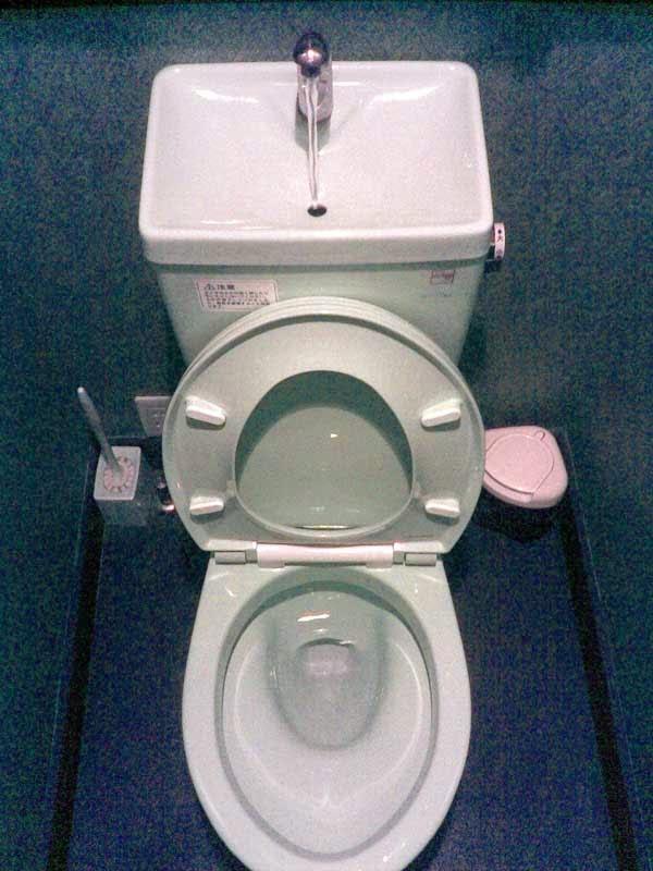chroniques malade chronique que faire et qu 39 en faire toilettes. Black Bedroom Furniture Sets. Home Design Ideas