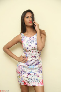 Nishi Ganda stunning cute in Flower Print short dress at Tick Tack Movie Press Meet March 2017 069.JPG