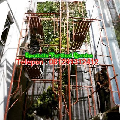 tukang taman vertical jakarta8