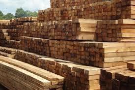 JUAL Kayu Akasia Mangium Untuk Berbagai Kebutuhan Property Kayu adalah salah satu kebutuhan yang selalu di gunakan untuk pembuatan berbagai produk perlengkapan rumah tangga. Property rumah tangga yang ada dan selalu di gunakan ini pastinya menggunakan kayu untuk bahan utamanya. Nah untuk jenis kayu ini pun sangat banyak sekali, salah satunya adalah kayu akasia mangium. Kayu akasia manguim ini adalah salah satu jenis kayu yang banyak di gunakan untuk pembuatan berbagai perlengkapan property untuk rumah tangga, kantor dan yang lainnya. nah untuk jenis kayu akasia mangium ini pun kita bisa mencarinya di berbagai distributor kayu yang ada di indonesia. JUAL kayu akasia mangium di tempat yang tepat, tentunya akan memberikan kita banyak keuntungan dan salah satunya adalah keuntungan mendapatkan kayu akasia mangium yang berkualitas bagus. meskipun banyak sekali jenis kayu lainnya, akan tetapi kayu akasia mangium ini masih termasuk jenis kayu yang banyak di buru oleh banyak orang. Kayu akasia mangium ini memang merupakan salah satu jenis kayu yang memiliki kualitas bagus yang hampir sama dengan kayu jati. Hanya saja untuk kayu jati ini pastinya di banderol dengan harga yang cukup tinggi, sedangkan untuk kayu akasia mangium ini di banderol dengan harga yang sedikit lebih terjangkau. Untuk itulah JUAL kayu akasia mangium ini tidak ada salahnya, karena memiliki kaulitas yang tidak kalah dengan kayu jati. Akan tetapi jika kita ingin membuat property untuk berbagai kebutuhan dan menggunakan kayu akasia mangium ini, kita pun harus memperhatikan peletakkan kayunya. Ya kayu akasia ini merupakana kayu yang sangat mudah sekali di tumbuhi jamur, sehingga kita pun harus meletakkannya di tempat yang tepat agar kayu yang akan di gunakan untuk pembuatan property ini aman. Kayu akasia mangium ini pun merupakan salah satu jenis kayu yang sangat kuat dengan berbagai kondisi dan cuaca. Kayu akasia mangium ini tahan akan hujan dan juga panas sehingga berbagai property yang di buat dari kayu ak