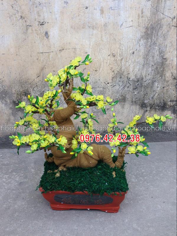 Goc bonsai cay hoa mai the rong tai Tho Thap