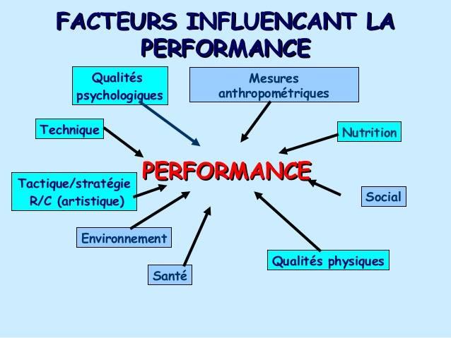 702de80343ca74 Facteurs influençant la performance