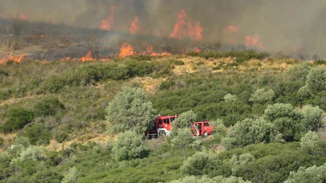 Υψηλός ο κινδυνος πυρκαγιάς στην Αργολίδα την Κυριακή