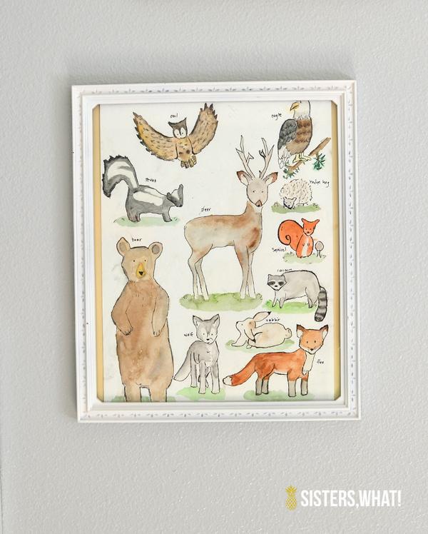 Woodland Animals Collection