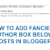 How To Add Fanciest Author Box Below Posts In Blogger