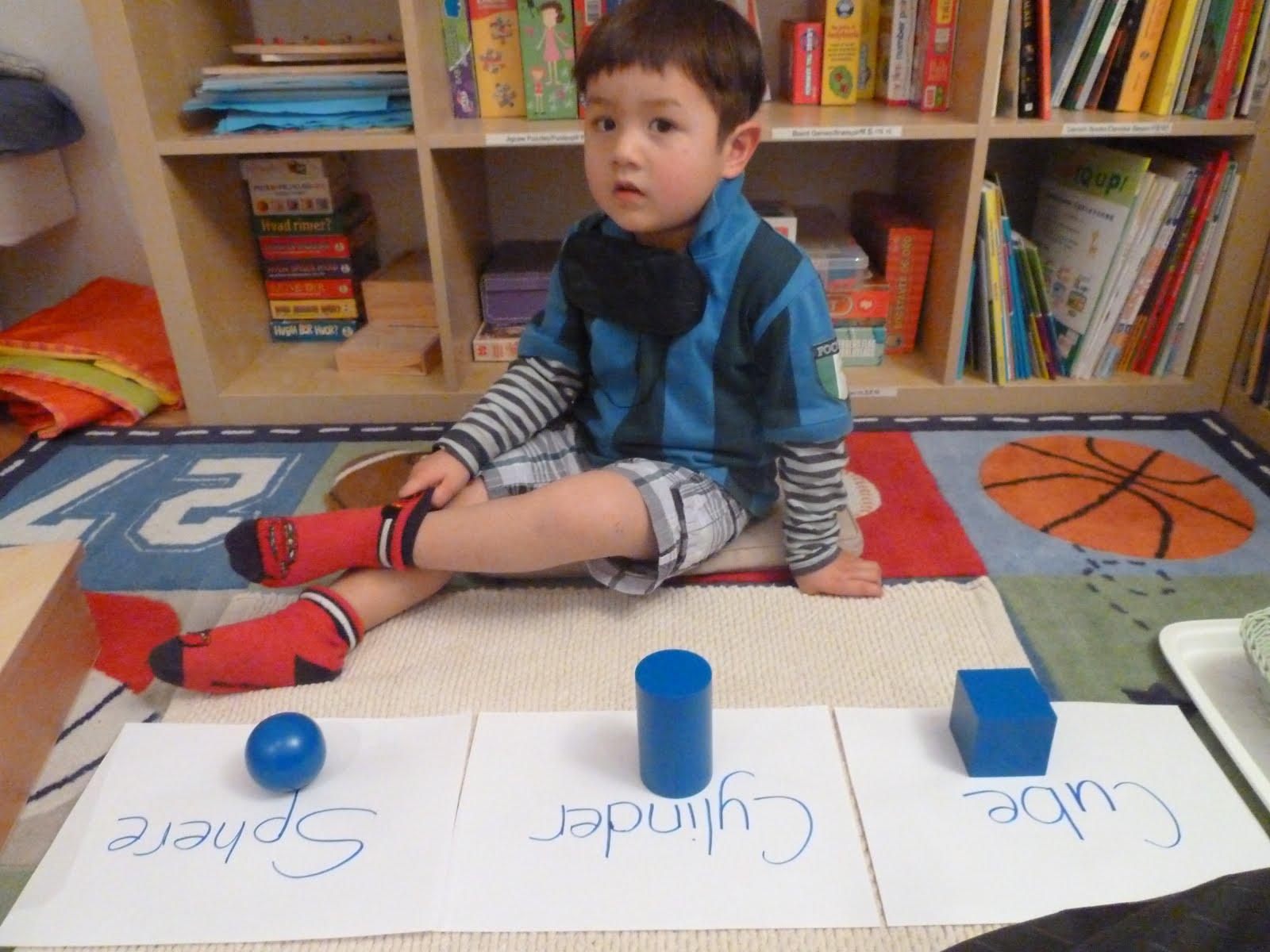 Family Fecs Montessori Activity Geometric Solids