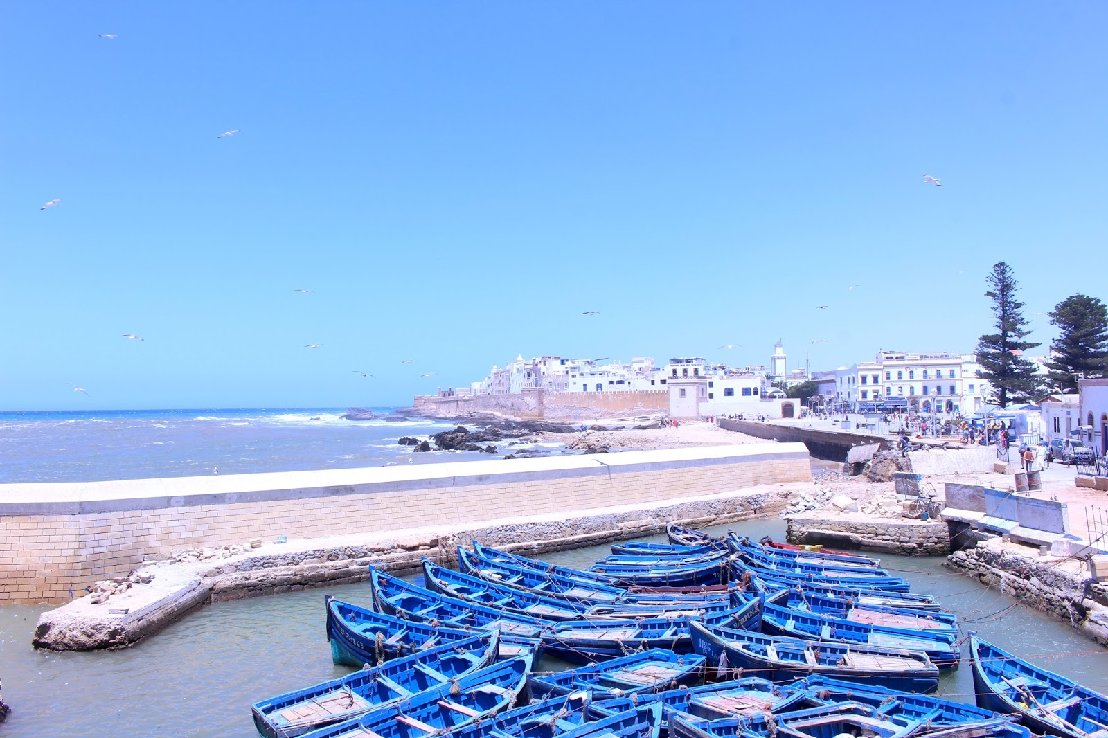 Excursion Essouira