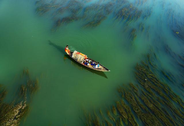 জল দূষণের কারন কী? (   what are the causes of  Water Pollution?)