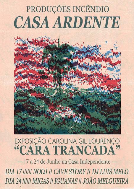 casa-ardente-cave-story-nooj-migas-iguanas-joao-melgueira-xita-records-alienacao