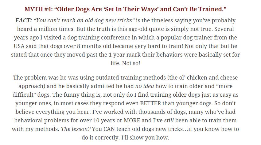 dog training videos,best dog training tips,top dog training tips