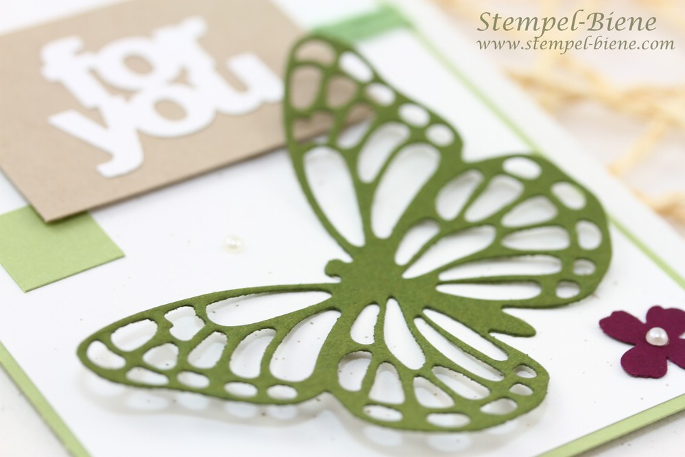 Stampin Up Schmetterlingsgruß, Stampin Up Grußkarte, Stampin up Tütenformen, Match the Sketch, Frühlingskarte, Sale a bration 2015