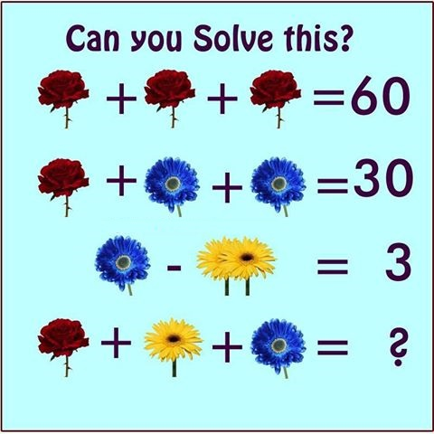 Flowers Math Picture Puzzle - Shake The Brain