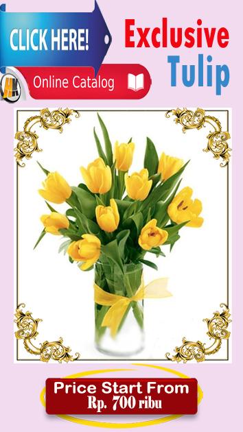 jual bunga tulip