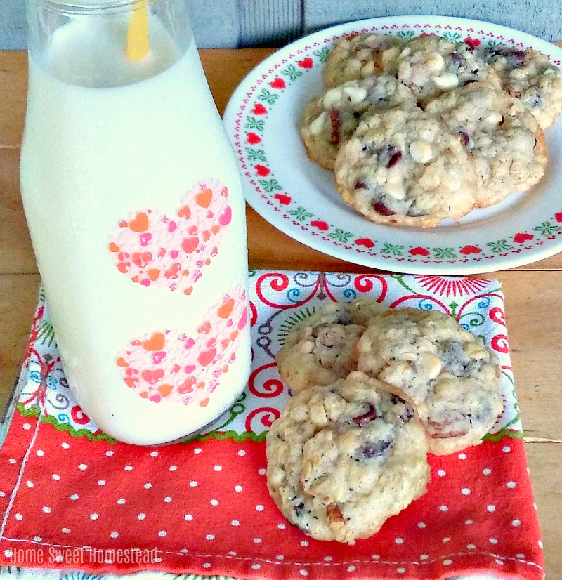 Trail Mix Cookies - Home Sweet Homestead