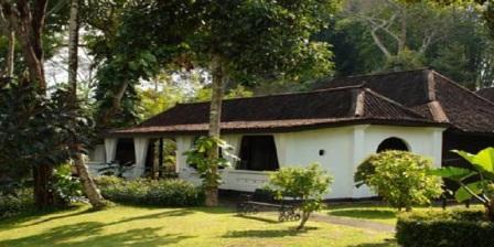 Menikmati Keindahan Kota Ambarawa di Malam hari dari losari coffee plantation Resort