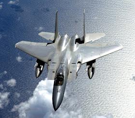 坂本晉作的世界: F-14熊貓式戰鬥機的故事