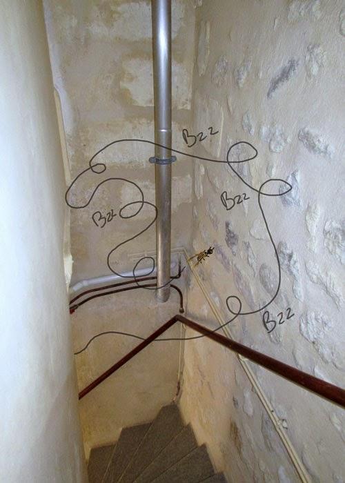 frelon dans cage d'escalier