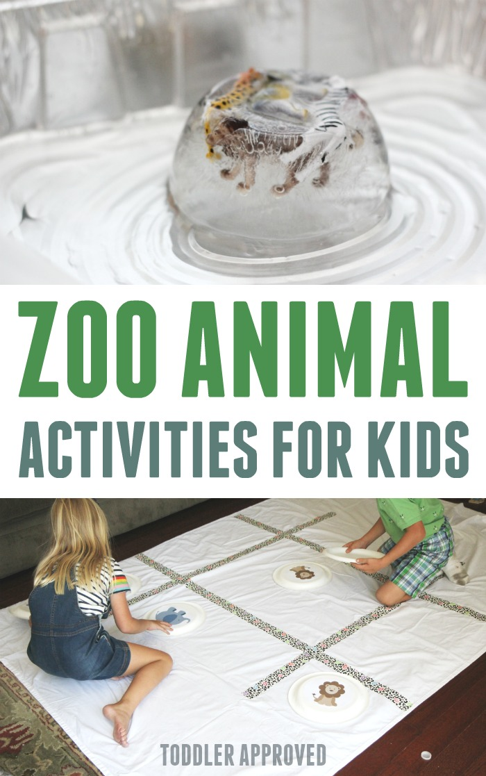 Zoo animals games