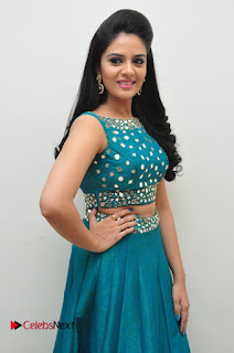 Sree Mukhi Pictures at Gentleman Audio Launch  0042