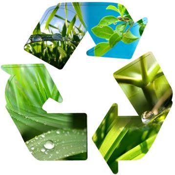 Resultado de imagem para manejo ambiental