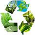 Senadores defendem integração com a Finlândia para manejo ambiental