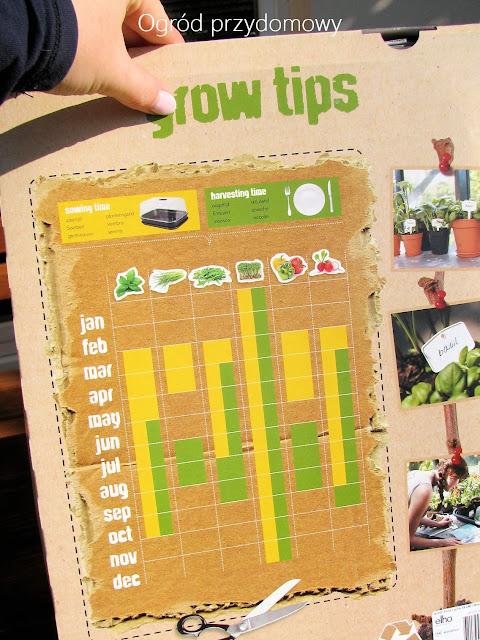 zestaw uprawny, siew warzywna liście, ogród przydomowy
