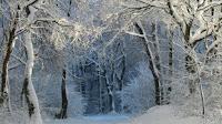 Iarna, de Vasile Alecsandri!