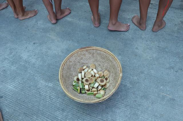 Vegetable Stalks Harvest Cultural Parade Participant
