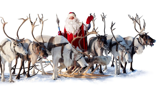 Christmas Reindeer Sleigh HD Wallpapers Free Download