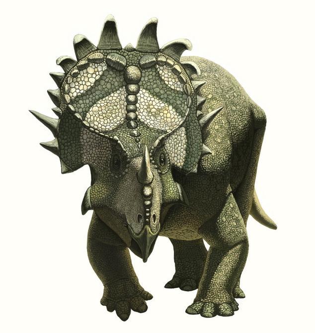 Species New to Science: [Paleontology • 2010] Sinoceratops ...