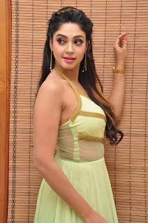 Actress Angana Roy Latest Pohtos  in Long Dress at Sri Sri Movie Audio Launch  0017.jpg