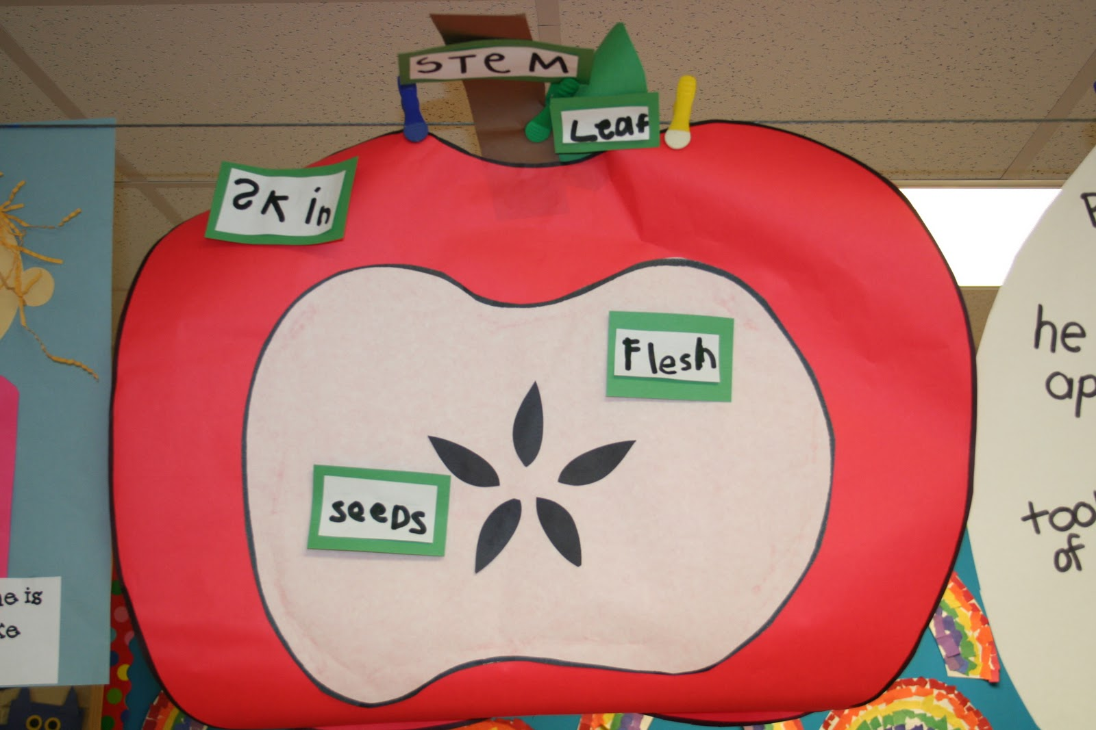Mrs Lee S Kindergarten Apples