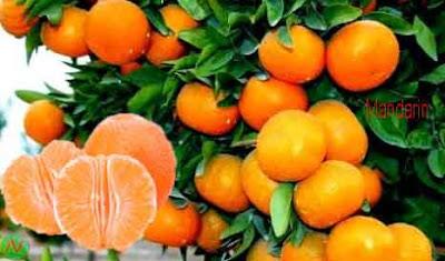 mandarin; mandarin fruit