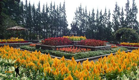 Tempat wisata taman melrimba garden bogor