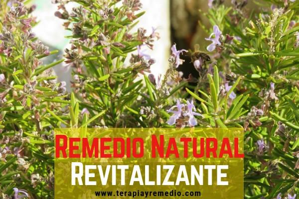 Este remedio natural revitalizante con Romero sirve para subir el animo