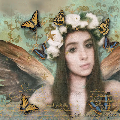 http://feathersandflight.blogspot.com/2015/07/a-butterflies-heart.html