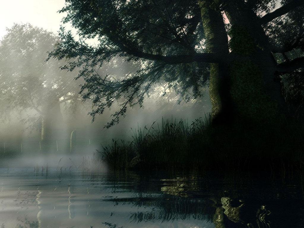 123beginners.com: Free Beautiful Rain Wallpapers For