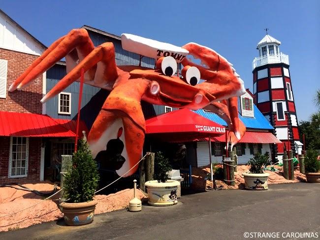 Tommy The Giant Crab Myrtle Beach Sc Strange Carolinas